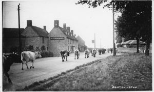 Parish Council Meeting @ Bletchingdon Village Hall